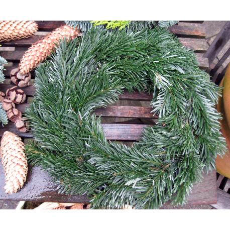 Adventkranz mit Tannengrün
